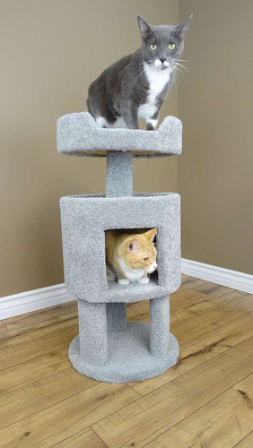 Premier Contemporary Cat House with multiple cats