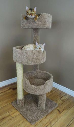 New Cat Condos Kitty Condo