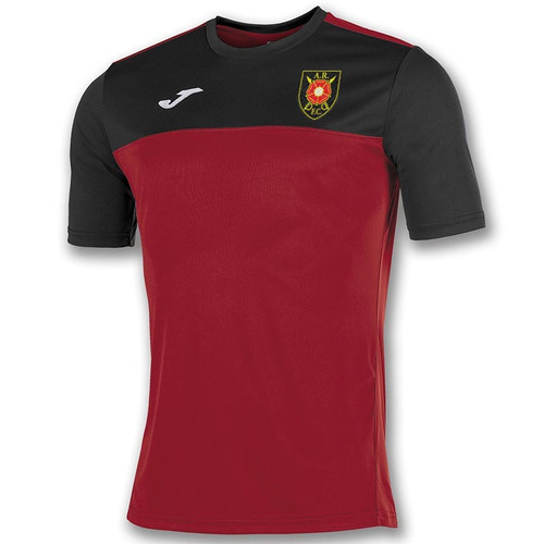 Albion Rovers Training T-Shirt