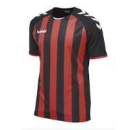 Hummel Teamwer Shirts - Core Striped Jersey - 003755