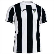Dunfermline Athletic Ladies Home Shirt