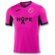 Hillfield Swifts Breast Cancer Awareness Shirt