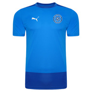 Fife Sons of Struth Training T-Shirt