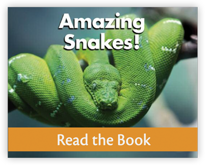Amazing Snakes full decodable book preview