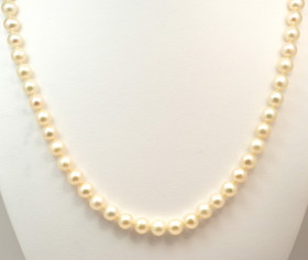 14K Yellow Gold Pearl Necklace 32000332