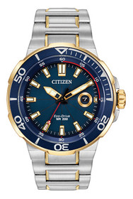 Citizen Men's Eco Drive AW1424-54L Endeavor Watch 60000876