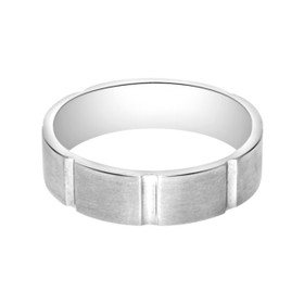 Titanium Comfort Fit 6mm Wedding Band 11510020