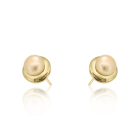 14K Yellow Gold Cultured Post Back Pearl Earrings 42002723