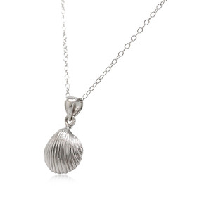 14K White Gold Sea Shell Charm 50003469