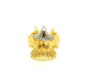 14K White And Yellow Two Toned Gold Ruby Eagle Ring 12002789