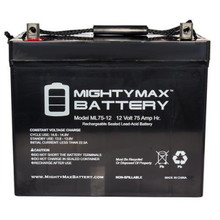 Mighty Max ML75-12 GRP 24 rechargeable batteries