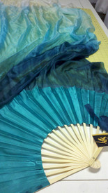 photo shows a single fan- you will receive 1 pair (left/right)