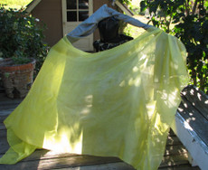 5mm Ultralight 3 yard Silk Belly Dance Veil, in DAFFODIL