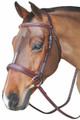 HDR Mono Crown Bridle With Wide Padded Noseband - Australian Nut