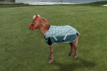 TuffRider 1200D Miniature Horse Turnout Blanket