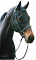 HDR Dressage Bridle - black with white