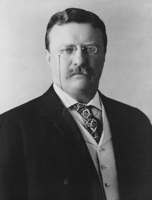 Theodore Roosevelt: The All-American Boy (Audio Download)