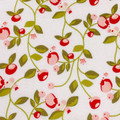 Hello Gorgeous Pomegranate Cream Fabric by Mind's Eye C5691