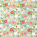 Garden Girl Mint Fabric by Riley Blake C5662