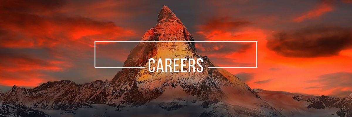 Careers - TravelSmarts
