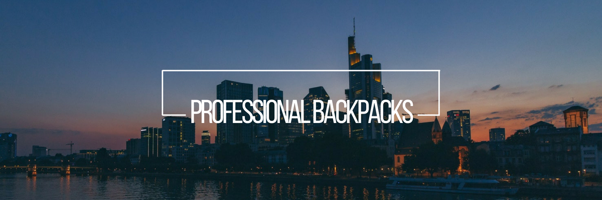 Professional Backpacks - TravelSmarts
