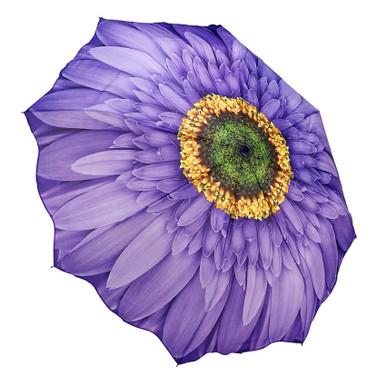 """Galleria Folding 48"""" Umbrella - Wisteria Daisy"""