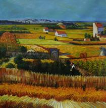 DAFA - Harvest at La Crau