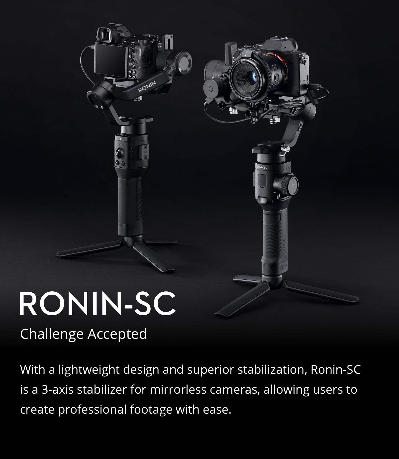 ronin-scdes1.jpg