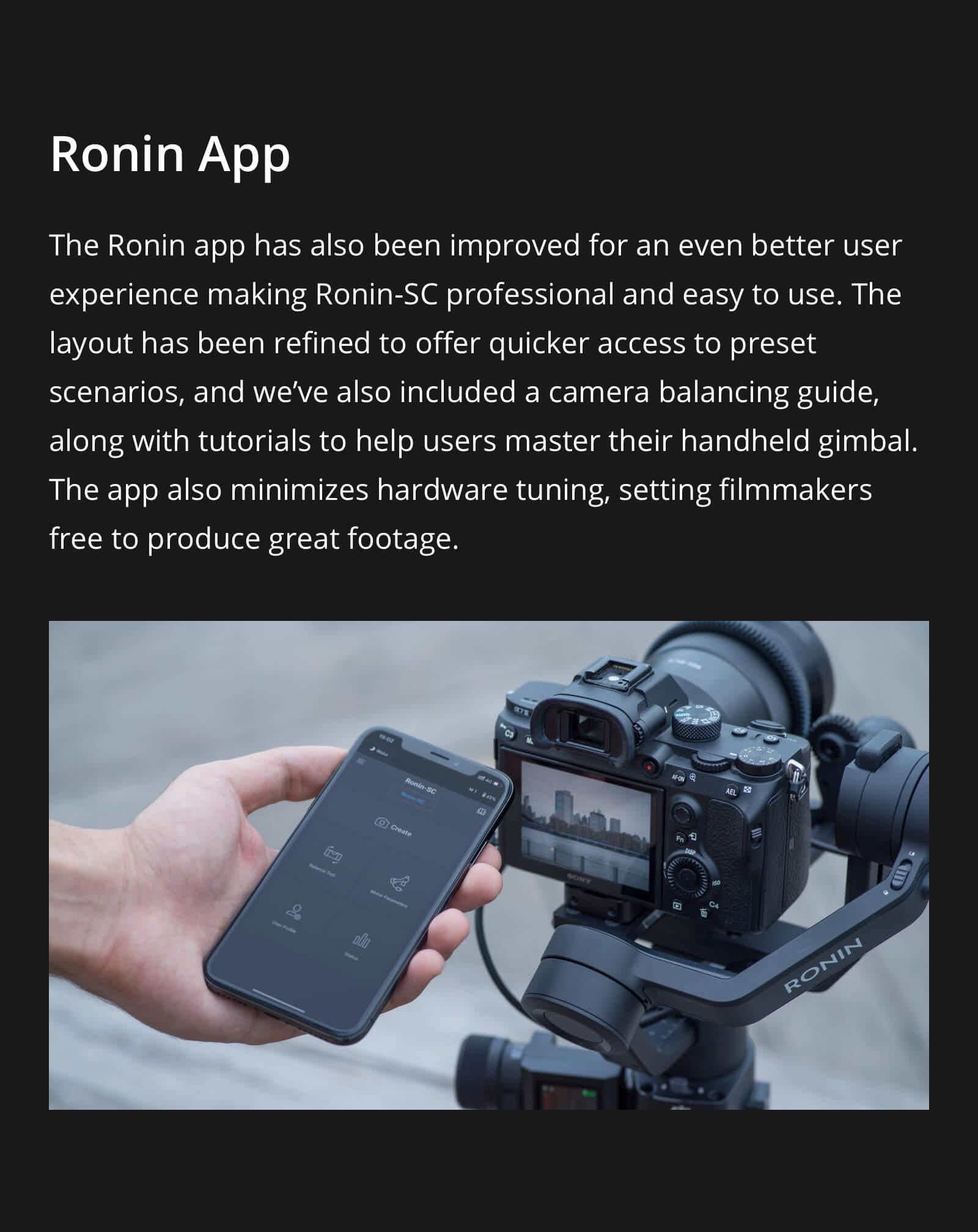 ronin-scdes10.jpg