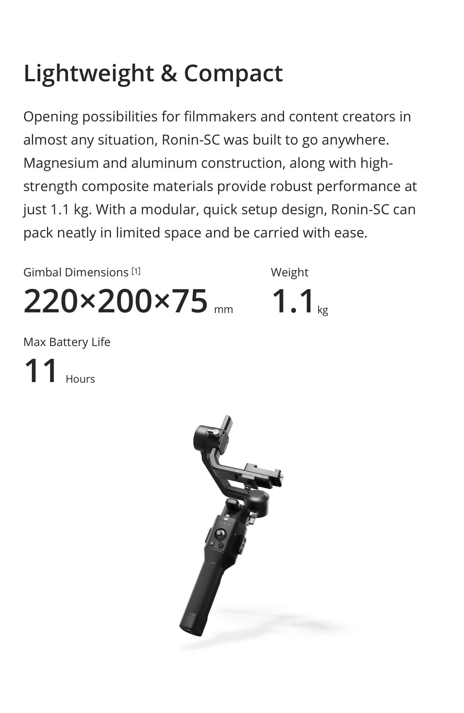 ronin-scdes2.jpg