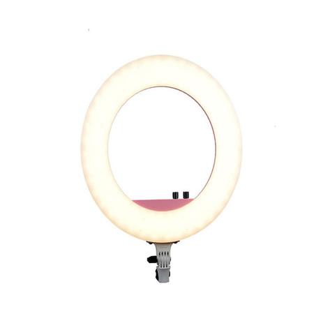 Nanguang Ring LED Light CN-R480C (Halo)