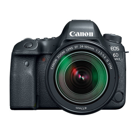 Canon 6DII DSLR Camera with EF 24-105mm F3.5-5.6 IS STM