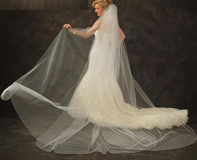 v5310-cathedral-veil-for-custom-made-category-resized.jpg