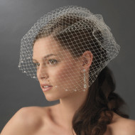 Birdcage Veil with Swarovski Crystal Edge