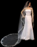 Extra Wide Beaded Silver Embroidery Cathedral Length Wedding Veil