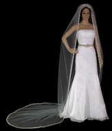 Luxurious Beaded Silver Embroidery Cathedral Length Wedding Veil
