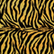 Zebra Gold and Black