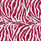 Zebra Red and White