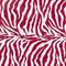 Zebra Red and White