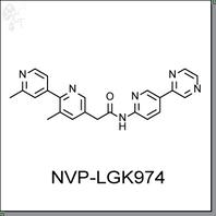 NVP-LGK974 (.png)