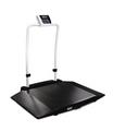 Rice Lake 350-10-3 Dual-ramp Wheelchair Scale