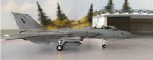 F-14A US Navy Naval Strike & Air Warfare Center NAS Fallon