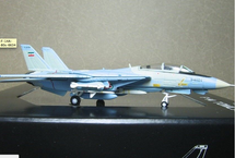 """F-14A Iranian Air Force """"Ali-Cat"""", Serial Number: 3-6024"""