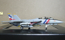 "F-14D US Navy VF-2 ""Bounty Hunters"" (Fighting Two)"