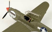 P-40N Warhawk USAAF 80th FG, 89th FS Burma Banshees, White 49