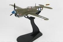 P-40N Warhawk USAAF 49th FG, 7th FS, #42-105202 Rita/Orchid 13