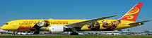 Hainan Airlines B787-9 (All Yellow) B-7302 w/Stand