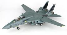 "F-14D Super Tomcat VF-31 CAG, ""Operation Iraqi Freedom"""