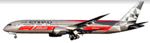 Etihad Airways Boeing 787-9 A6-BLV special scheme with stand
