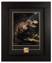 Framed Photograph of Tyrannosaurus Rex with Genuine Dominican Amber and Insect Specimen